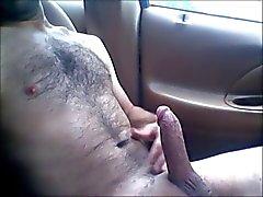 Im auto wixen Wixom, MI